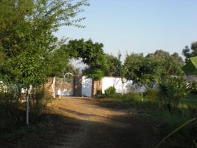 Image No.8-Ferme de 3 chambres à vendre à Köycegiz