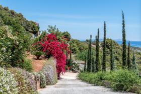 Image No.10-Villa de 4 chambres à vendre à Epidavros