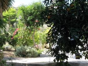 Image No.15-Villa / Détaché de 1 chambre à vendre à Asini