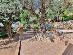 Image No.11-Maison / Villa de 2 chambres à vendre à Tyros