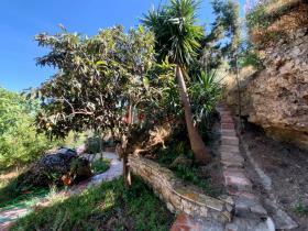 Image No.24-Maison / Villa de 3 chambres à vendre à Petalidi