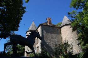 Image No.5-Châteaux de 7 chambres à vendre à Aubusson
