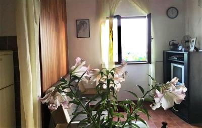 baska-voda-bast-house-sale-property-kuca-kuce-nekretnine-prodaja-croatia-real-estate-makarska-riviera-4-a