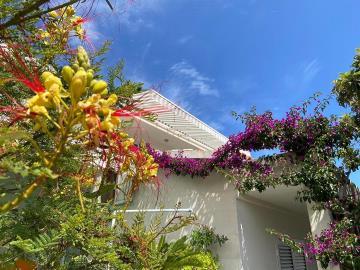 vis-island-otok-villa-pool-sale-property-estate-croatia-vila-s-bazenom-kuca-vile-vis-prodaja-nekretnine-6-a