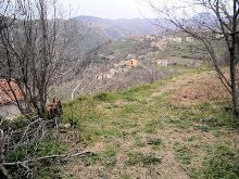 Image No.15-Grange à vendre à Belmonte Calabro