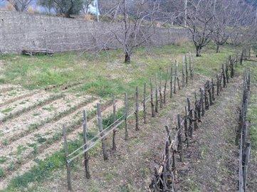 1-villapazzuolo30MF garden