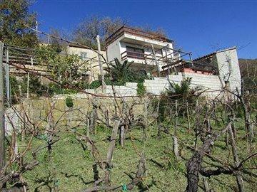 1 - Cetraro, Villa