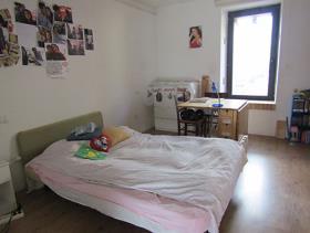 Image No.19-Villa de 3 chambres à vendre à Cetraro