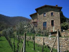 Cavriglia, Village House