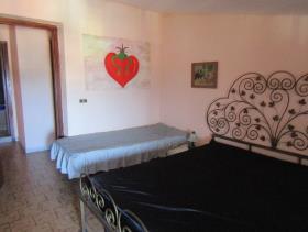 Image No.18-Maison de ville de 2 chambres à vendre à Santa Maria del Cedro