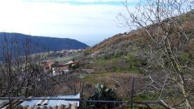 Image No.11-Ferme de 2 chambres à vendre à Belmonte Calabro