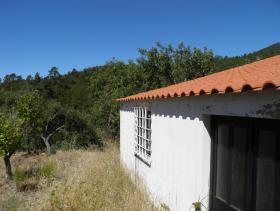Image No.11-Ferme de 2 chambres à vendre à Monchique