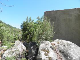 Image No.18-Ferme de 2 chambres à vendre à Monchique