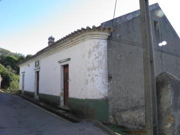 PA246664