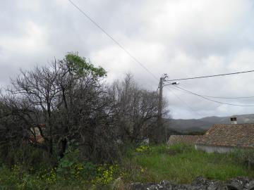 P3067085