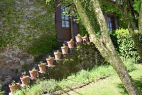 Image No.16-Propriété de pays de 5 chambres à vendre à Arnac-Pompadour