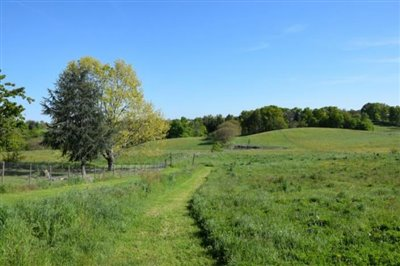 5209_bertho_immo_13_hectares_campagne--3-
