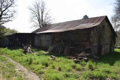 5406_limousin_property_agents_pompadour_farmhouse_pasture_land--7-