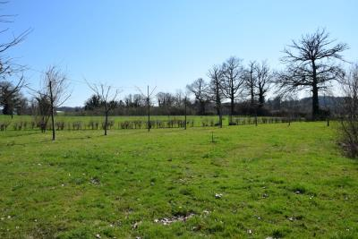 5179_limousin_property_agents_farmhouse_outbuilings_land_views--2-