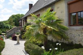 Image No.10-Maison de 3 chambres à vendre à Arnac-Pompadour
