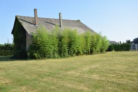 Image No.16-Ferme de 2 chambres à vendre à Arnac-Pompadour