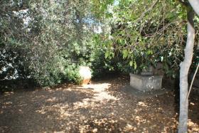Image No.7-Maison de 3 chambres à vendre à Milatos