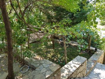 rana-evi-garden