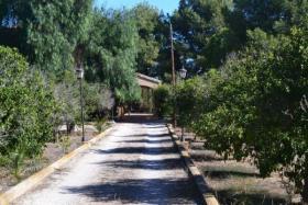 Image No.6-Maison / Villa de 4 chambres à vendre à Purias