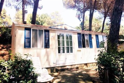 13-this-home-is-set-in-a-nice-plot-with-pine-trees-for-shade-from-the-hot-summer-sun-DONE--2-