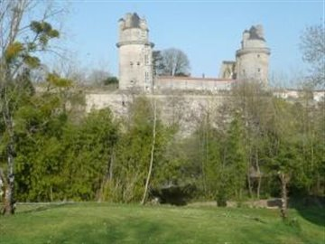 Distant_view_of_the_local_chateau