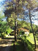 Image No.14-Mobile Home de 2 chambres à vendre à Montopoli