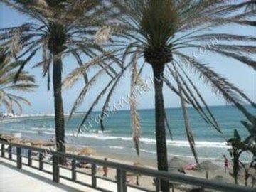 beachview2-300x225