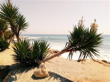 Almeria-Beach-2-Almeria-Mojacar