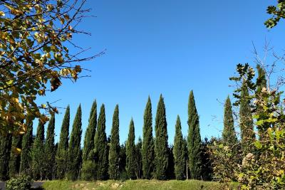 Toscana-Holiday-Village--2-