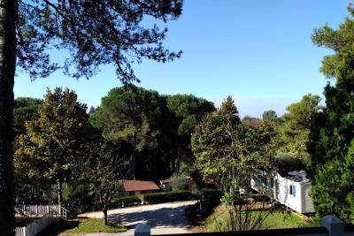 Plot-79-Toscana-Holiday-Village-Tuscany-Italy--1-