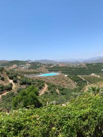 Velez-Malaga-July-2020--1-