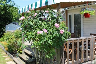 06-Exterior-Willerby-Chambery-Plot-521-Bergerac-South--9-