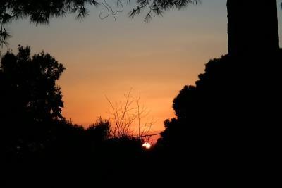09-Exterior-Willerby-Rio-Special-Plot-66-Toscana-Holiday-Village-Tuscany-Italy--11-