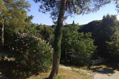 10-Exterior-Willerby-Rio-Special-Plot-66-Toscana-Holiday-Village-Tuscany-Italy--19-