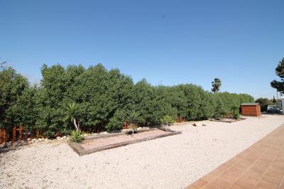 28--side-garden
