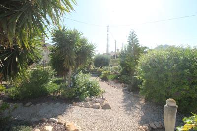 22---garden