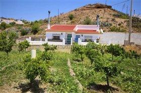 Image No.2-Villa de 4 chambres à vendre à Albox
