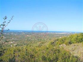 Image No.1-Terrain à vendre à Santa Bárbara de Nexe