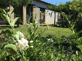Image No.24-Villa de 3 chambres à vendre à Santa Maria Imbaro