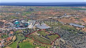 Image No.3-Villa de 1 chambre à vendre à Pêra