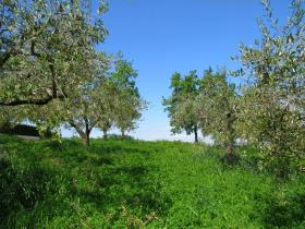 Image No.9-Land for sale