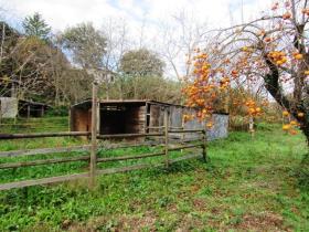 Image No.11-5 Bed Cottage for sale