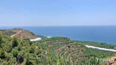 1642-delightful-detached-villas-with-panoramic-sea-view-to-buy-in-alanya-5fb642ec02f88