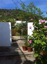 Image No.29-Maison de 3 chambres à vendre à Gualchos
