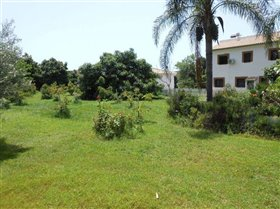 Image No.3-5 Bed Country Property for sale